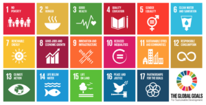 UN Sustainability Goals Chart